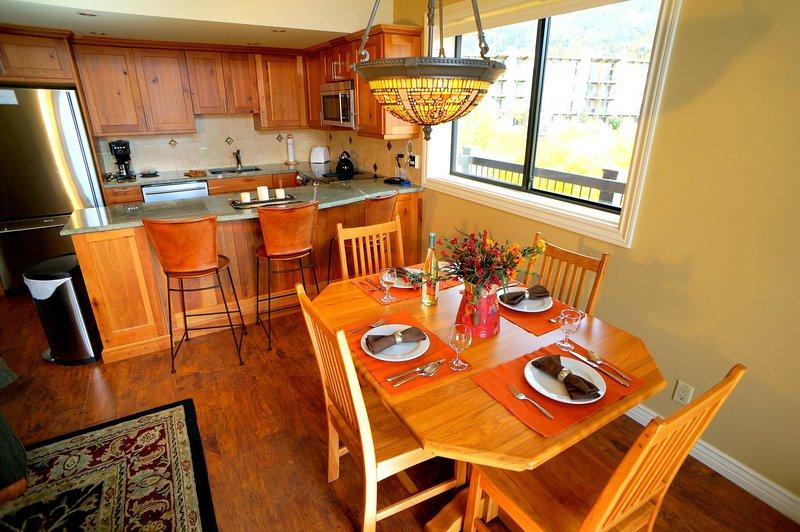 Storm Meadows Club C #419 - Image 1 - Steamboat Springs - rentals
