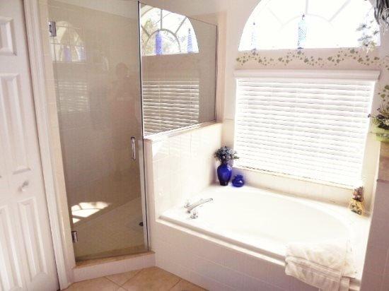 Stunning 5 Bedroom 3 Bath Villa with Salt Water Pool. 1027DL - Image 1 - Orlando - rentals