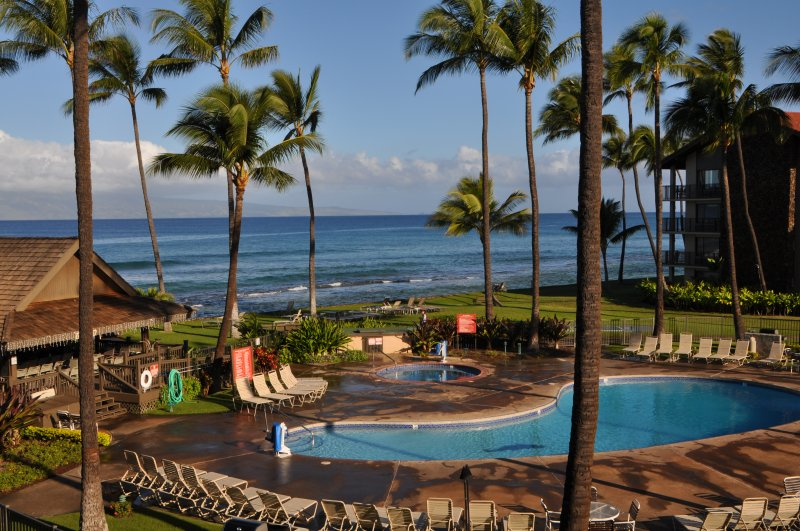 2/2 FANTASTIC ocean view! Remodeled with  HAWAIIAN Charm! Read Reviews! - Image 1 - Ka'anapali - rentals