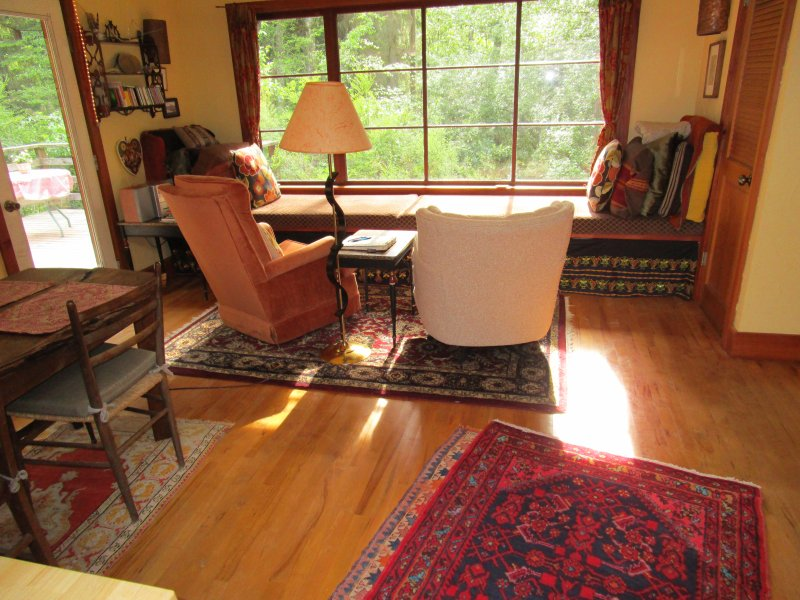 light filled living room - Small Private Whidbey Island House - Freeland - rentals