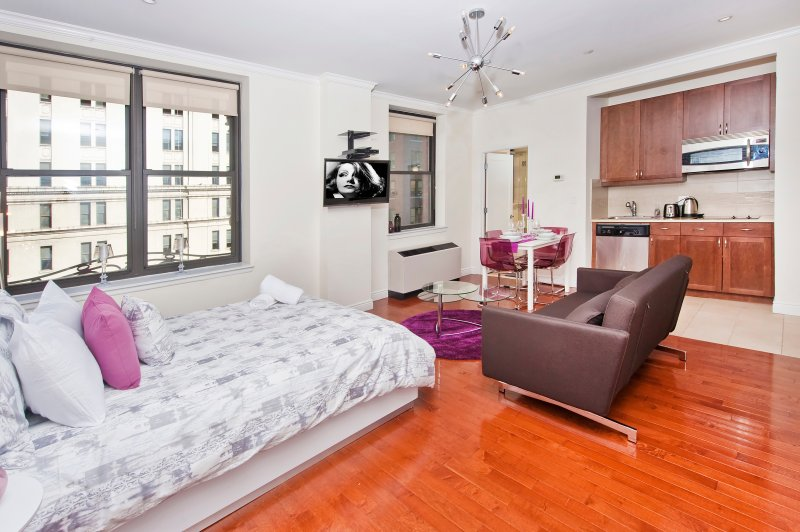 Midtown luxury studio  #9027 - Image 1 - Manhattan - rentals