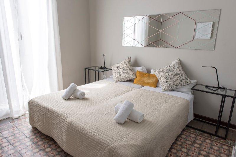 Pau Claris cv5 - Image 1 - Barcelona - rentals