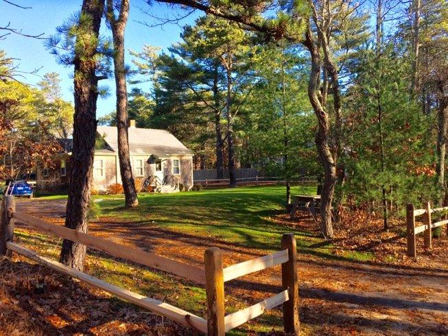 The Magpie Cottage in Vineyard Haven (399) - Image 1 - Massachusetts - rentals