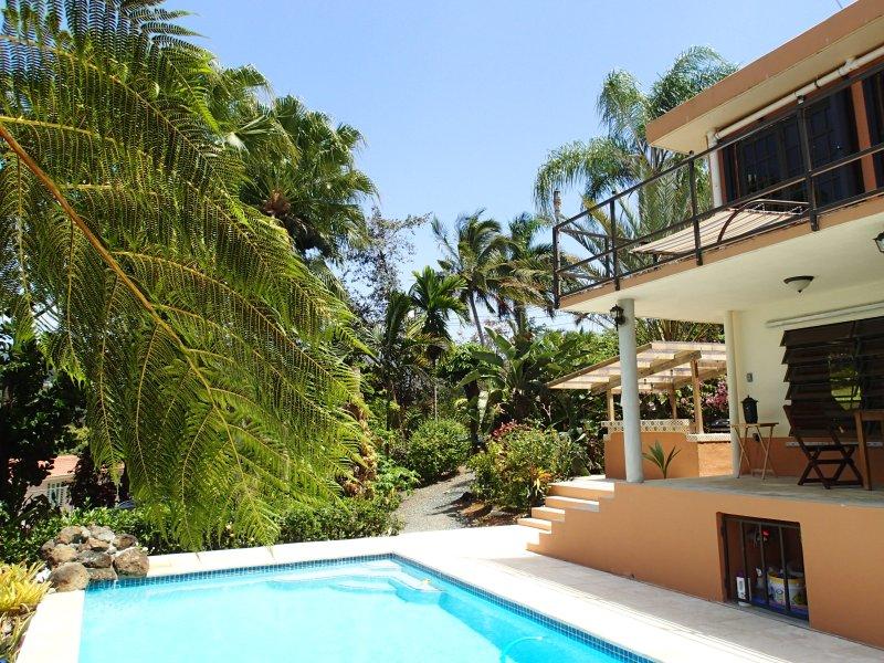 Provencial style villa in Caribbean - Image 1 - Rio Grande - rentals