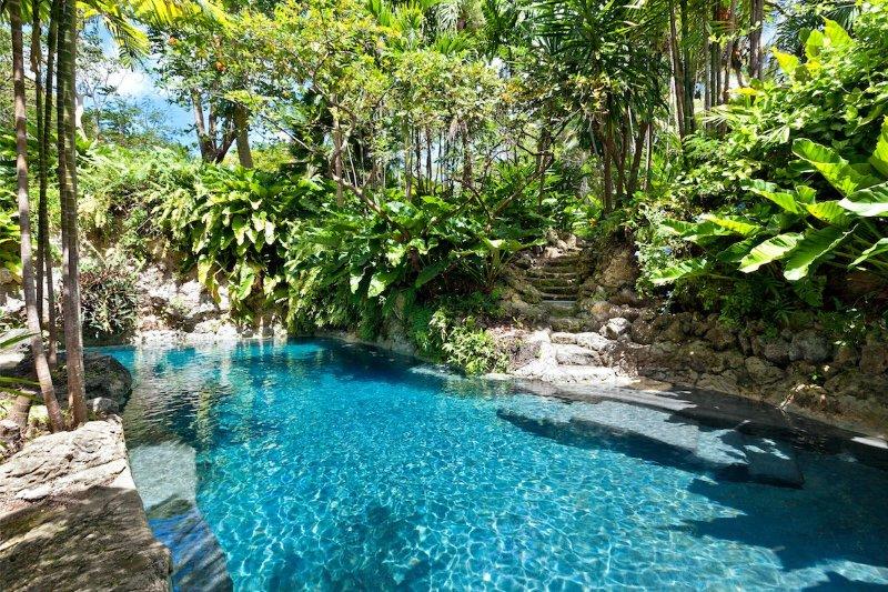 Luxury 7 bedroom Barbados villa. The Privacy! The Location! - Image 1 - Barbados - rentals