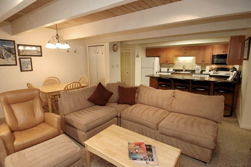 living_area_1.jpg - Chateau Chaumont Unit 5 - Aspen - rentals