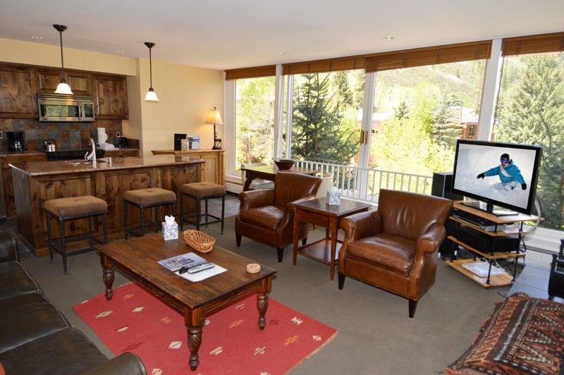 living-2.jpg - Durant Condominiums Unit A101 - Aspen - rentals