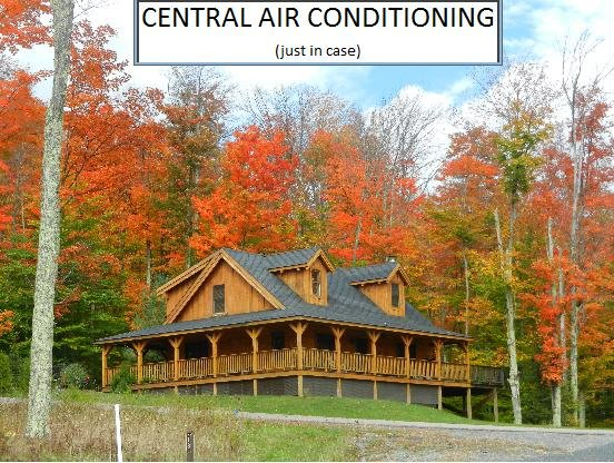11 Acre Lake  -  North Lake Cabin - Central Air Conditioning - Image 1 - Canaan Valley - rentals