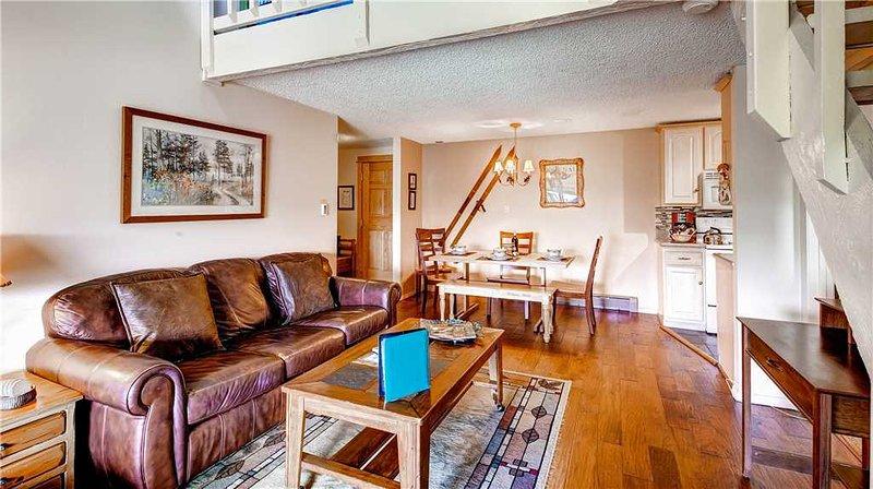 Ski Inn 333 - Image 1 - Steamboat Springs - rentals