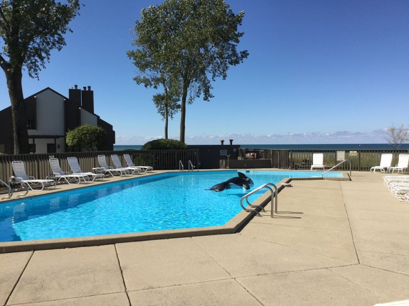 Bent Tree #16 - Lakefront Condos with Private Beach and Pool - Image 1 - South Haven - rentals