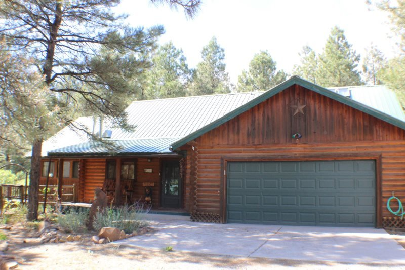 Antelope is a cute, pet-friendly cabin ideal for your vaction in Pagosa Springs. - Image 1 - Pagosa Springs - rentals