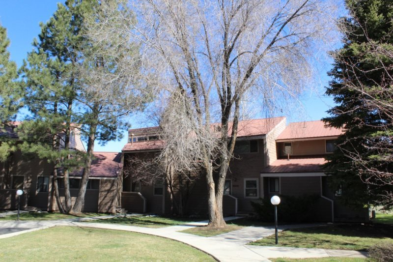 Pines 4007 is a vacation condo centrally located in Pagosa Springs. - Image 1 - Pagosa Springs - rentals