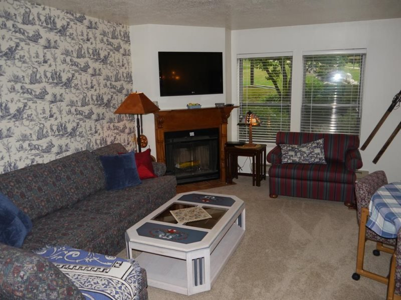 Beautiful 2 bedroom condo, sleeps 6 - Image 1 - Eden - rentals