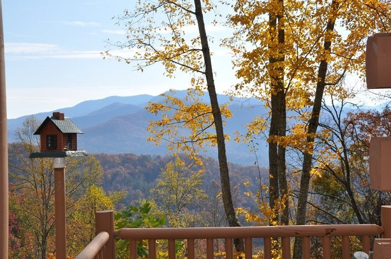MooseHead Lodge - Mountainside Cabin with Enchanting View - Stone Fire Pit - 15 - Image 1 - Bryson City - rentals