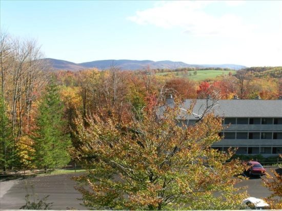 Beaver Ridge 109 - Image 1 - Canaan Valley - rentals