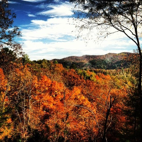 ROCKY LODGE- 2BR/1BA, AWESOME MOUNTAIN VIEW, PRIVATE HOT TUB WITH ROMANTIC - Image 1 - Blue Ridge - rentals