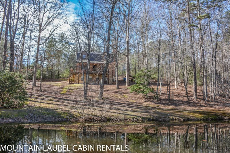 KINGDOM CABIN #1- 4BR/3BA- TOTALLY SECLUDED CABIN SLEEPS 8, PING PONG, POND - Image 1 - Blue Ridge - rentals