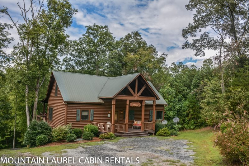 RUNABOUT TROUT LODGE-4BR/3.5BA CABIN ON THE TOCCOA RIVER,SLEEPS 12, EXCELLENT - Image 1 - Blue Ridge - rentals