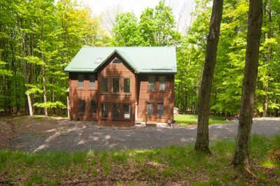 Timberly - 699 Ridge Road - Image 1 - Canaan Valley - rentals
