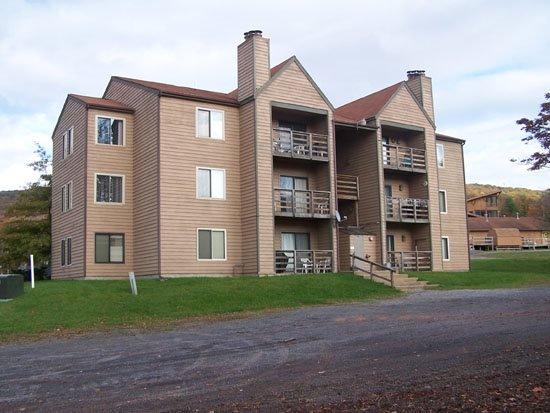 Herzwood D301 - Image 1 - Canaan Valley - rentals