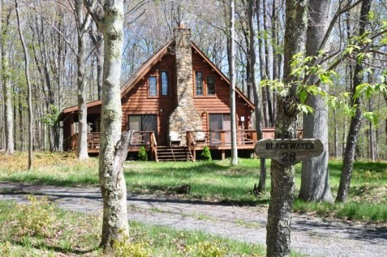 Mingo Lodge - 345 Lakeview Road - Image 1 - Canaan Valley - rentals