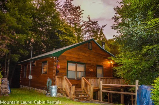 TUCKED AWAY- 2BR/1BA WOODED CABIN, CLOSE TO TOWN, WOOD BURNING FIREPLACE, WIFI - Image 1 - Blue Ridge - rentals