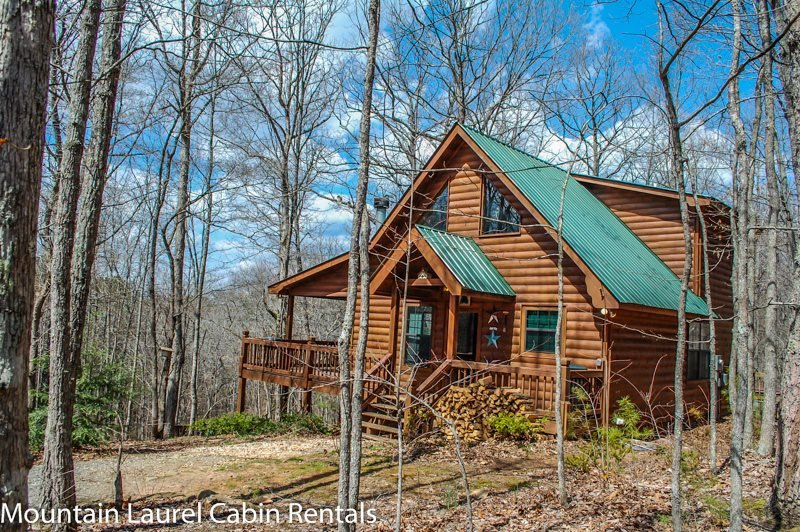 WOLF`S DEN- 2BR/2BA, SLEEPS 4, HOT TUB, WIFI, FLAT SCREEN TV`S IN EVERY ROOM - Image 1 - Blue Ridge - rentals