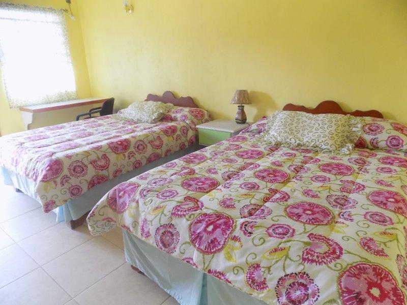 TROPICAL PARADISE VIEW  ( Tamarind Room #6) - Image 1 - Anse La Raye - rentals