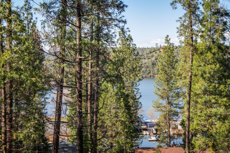 Regal house w/ lake views, entertainment, shared pool - near Yosemite - Image 1 - Groveland - rentals