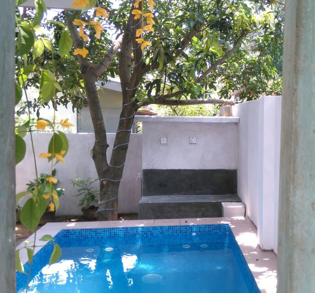 Plunge pool under the mango tree - Villa with Plunge pool & jacuzzi - Panadura - rentals