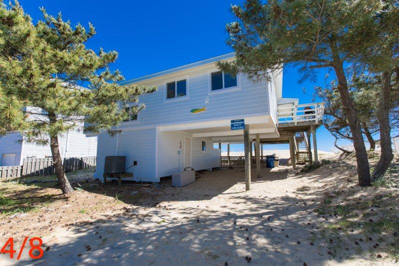 Ocean Oasis - Image 1 - Virginia Beach - rentals
