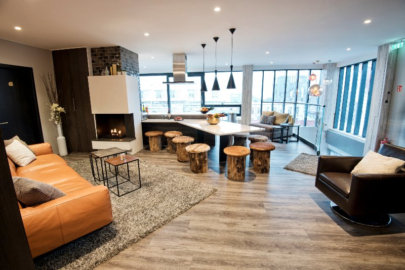 Living room and Kitchen - B14 Luxury Penthouse for groups - Reykjavik - rentals