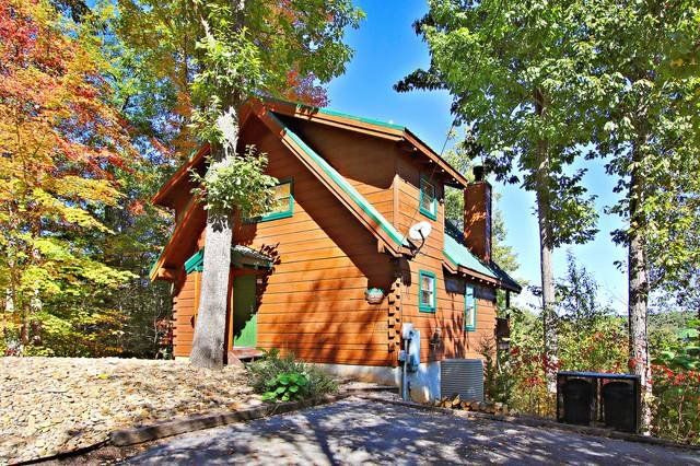 Passion Flower - Image 1 - Gatlinburg - rentals