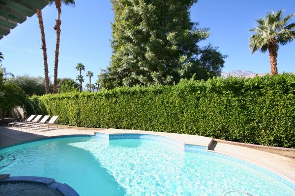 California Life - Image 1 - Palm Springs - rentals