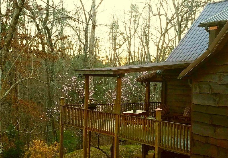 Sandpiper Cabin: Lake Lure Log Cabin Rental - Image 1 - Lake Lure - rentals