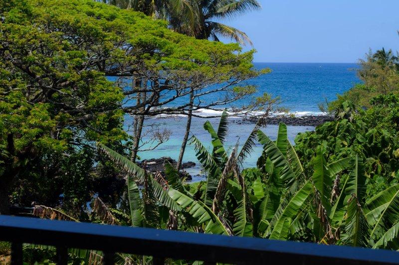 Maunaloa Shores 306 is a 2 bedroom, oceanfront condo in Hilo's beach park district. - Maunaloa Shores 306; 2 Bedroom Oceanview Condo in Hilo - Hilo - rentals