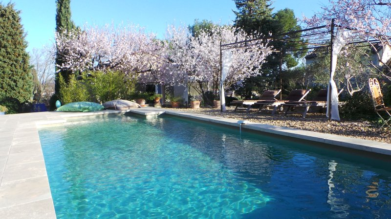 air conditioned cottage+pool st remy provence - Image 1 - Le Paradou - rentals