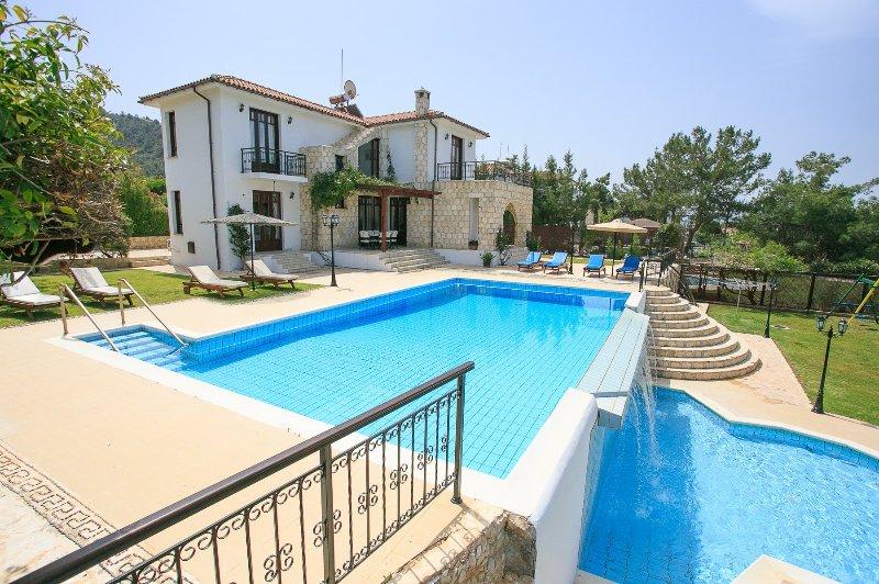 Villa Ariadne - Image 1 - Argaka - rentals