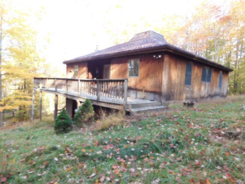 Cedar Haus - 873 Sand Run Road - Image 1 - Canaan Valley - rentals
