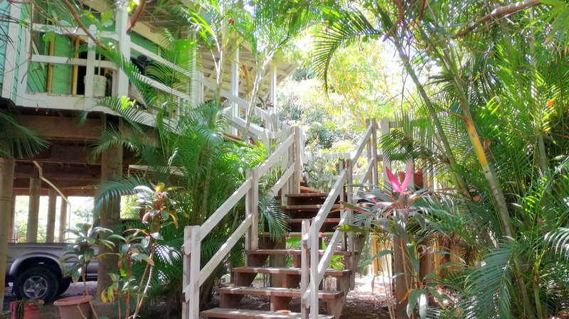 Stairs - Casa Coral, 1 Minute walk from West End Beach. - West End - rentals