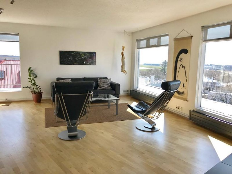 Penthouse  apartment with a great view - Image 1 - Reykjavik - rentals
