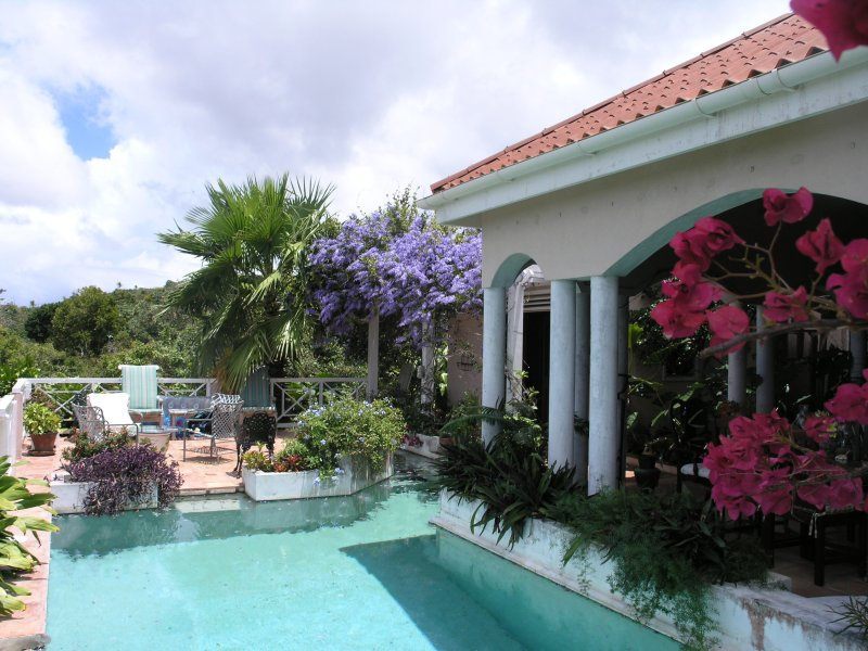 Estate of Mind is a Unique Property on 5 Acres - Image 1 - Nevis - rentals