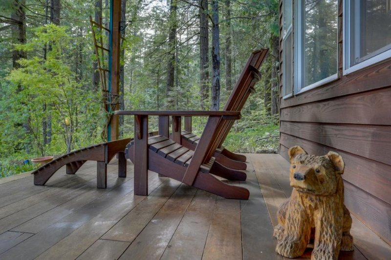 Secluded mountain lodge with beautiful Columbia River Gorge views! - Image 1 - Stevenson - rentals