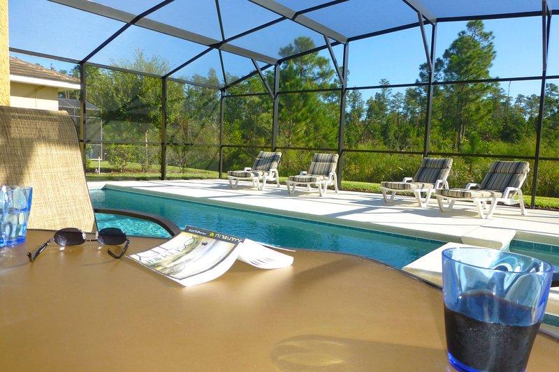 Pool - My Disney Villa - Kissimmee - rentals