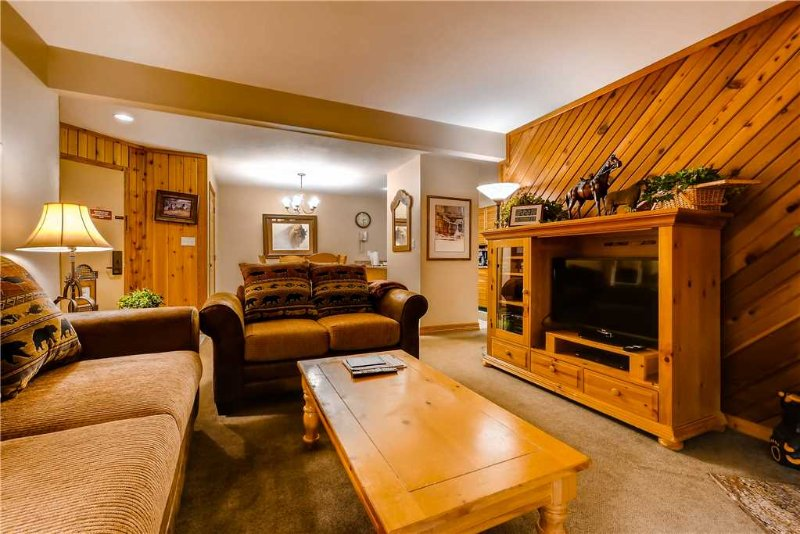 Timber Run 410 - Image 1 - Steamboat Springs - rentals