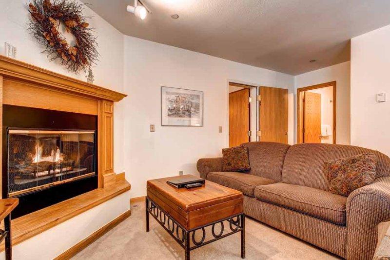 River Mountain Lodge #W213 - Image 1 - Breckenridge - rentals