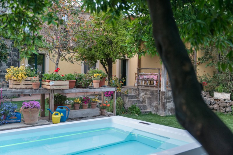 The garden and the pool - il pozzo e l'ulivo - just 200 meters from the Metro station - - Catania - rentals