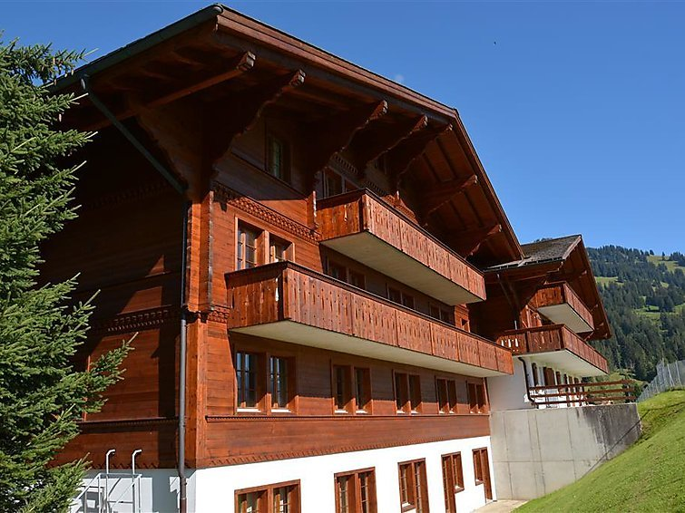 6 bedroom Apartment in Schonried, Bernese Oberland, Switzerland : ref 2297057 - Image 1 - Schönried - rentals