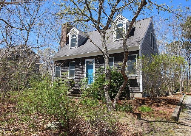 NATURALLY LIGHTED CAPE LOCATED ON A QUITE CUL-DE-SAC - Image 1 - Edgartown - rentals