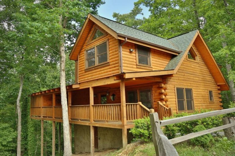 Grin n' Bear It - Image 1 - Sevierville - rentals
